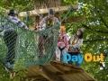 castlecomer-discovery-park-kilkenny-high-ropes-adventure