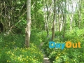 castlecomer-discovery-park-walking-trails