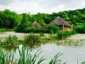 irish-national-heritage-park-summer
