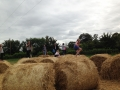 Rancho-Reilly-Carlow-Hay-Bales