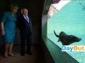 DublinZoo_SeaLions_PresidentHiggins.jpg