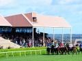 Wexford-Racecourse