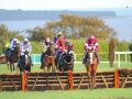 wexford-racecourse-racing