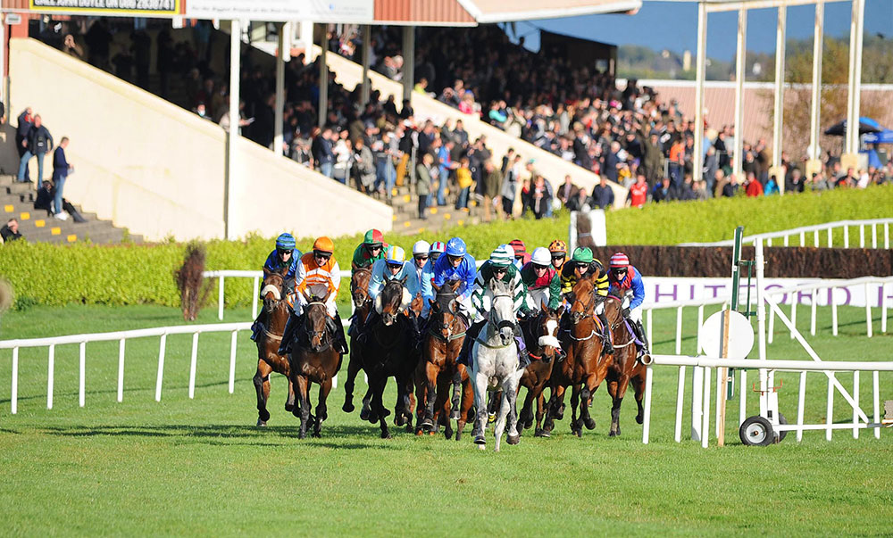 wexford-racecourse-homestraight