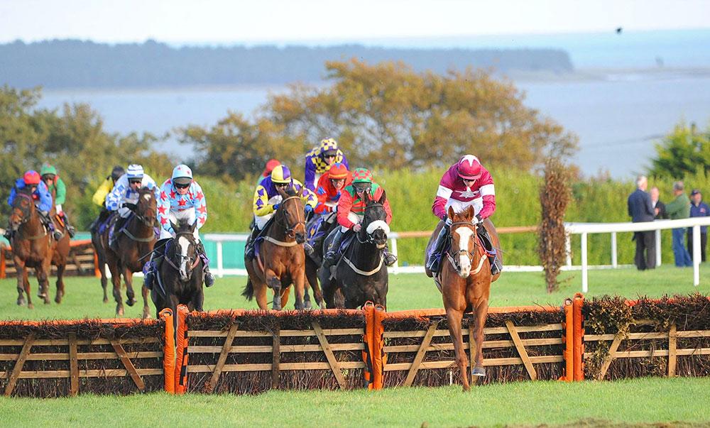wexford-racecourse-racing