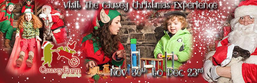 causey christmas