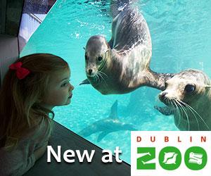 visit dublin zoo