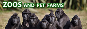 ZOOS-and-pet-farms